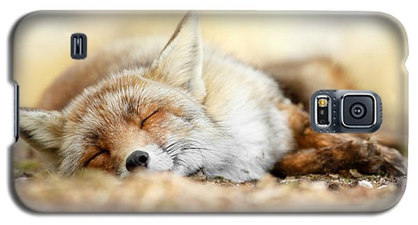 Sleeping Beauty -red Fox In Rest Galaxy S5 Case by Roeselien Raimond