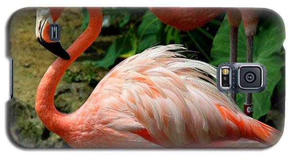 Sleeping Flamingo Galaxy S5 Case
