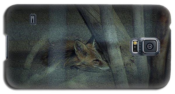 Sleeping Fox Galaxy S5 Case