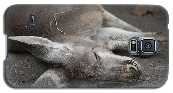 Galaxy S5 Case featuring the photograph Sleeping Joey 20120714_65a by Tina Hopkins
