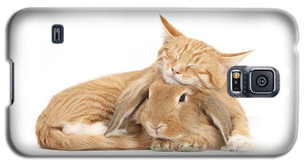 Sleeping On Bun Galaxy S5 Case