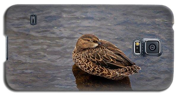 Galaxy S5 Case featuring the photograph Sleepy Duck by Arthur Dodd