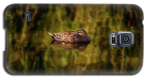 Galaxy S5 Case featuring the photograph Sleepy Duck, Yanchep National Park by Dave Catley