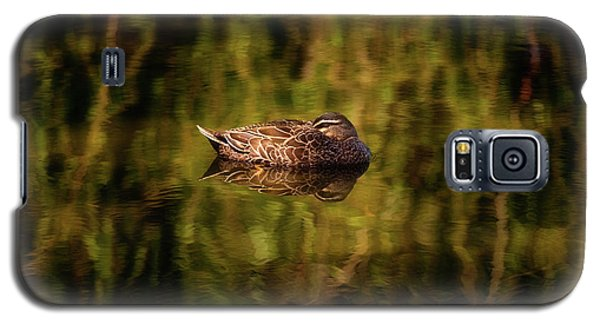 Sleepy Duck, Yanchep National Park Galaxy S5 Case by Dave Catley