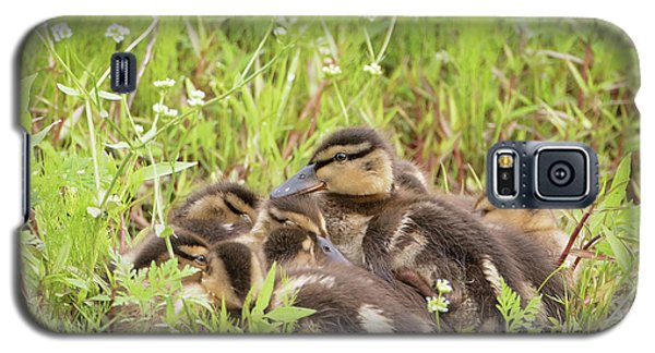 Sleepy Ducklings Galaxy S5 Case