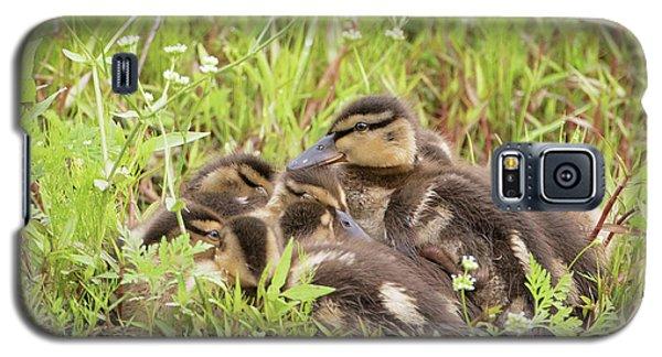 Sleepy Ducklings Galaxy S5 Case