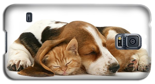 Sleepy Ginger Pals Galaxy S5 Case