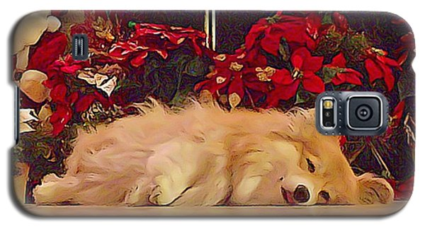Galaxy S5 Case featuring the photograph Sleepy Holiday Corgi Surrounded By Poinsettias. by Kathy Kelly