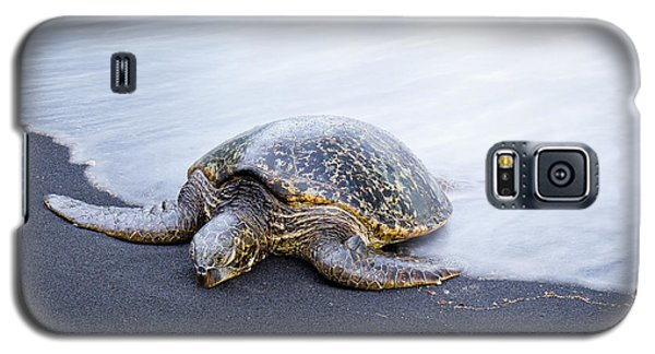 Sleepy Honu Galaxy S5 Case