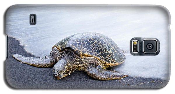 Sleepy Honu Galaxy S5 Case