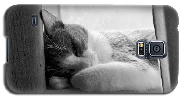 Sleepy Kitty Galaxy S5 Case
