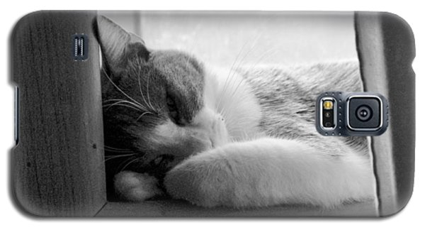 Sleepy Kitty Galaxy S5 Case