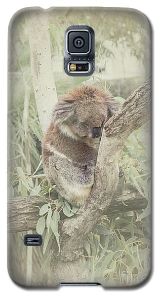 Sleepy Koala Galaxy S5 Case