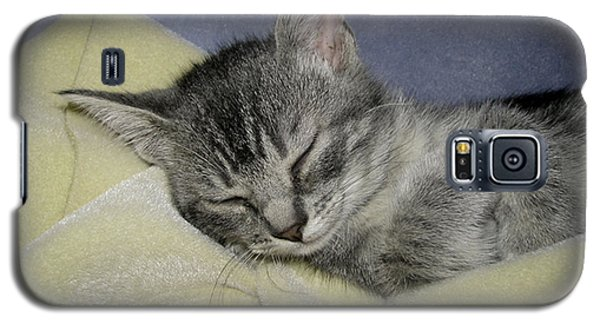 Sleepy Time Galaxy S5 Case by Donna Brown