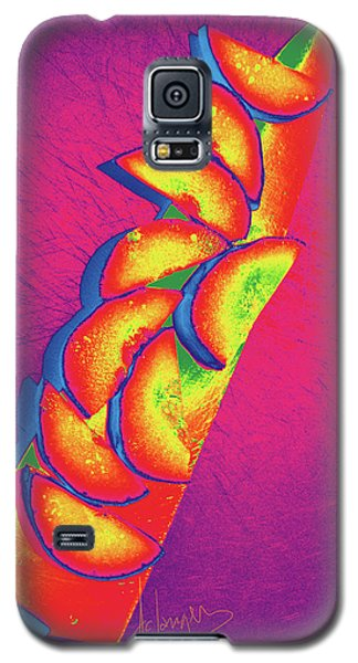 Slices Galaxy S5 Case by DC Langer