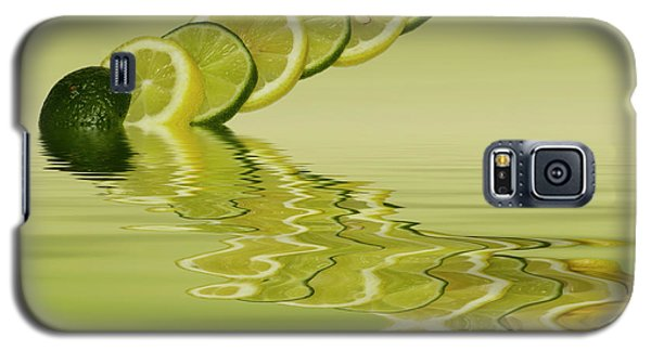 Galaxy S5 Case featuring the photograph Slices Lemon Lime Citrus Fruit by David French
