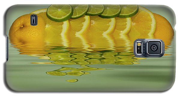 Galaxy S5 Case featuring the photograph Slices Orange Lime Citrus Fruit by David French