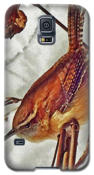 Slim Pickens, Carolina Wren Galaxy S5 Case by Ken Everett