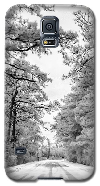 Slippery When Frozen Galaxy S5 Case