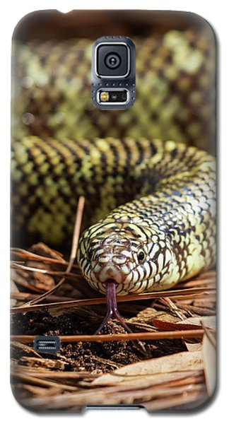 Slither Snake Galaxy S5 Case