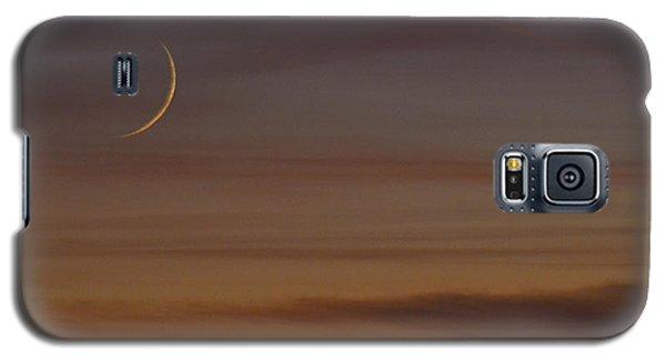 Sliver Galaxy S5 Case