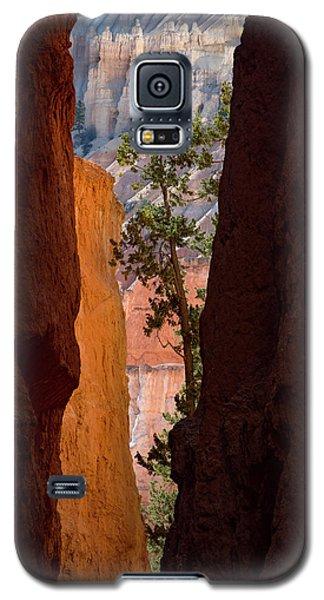 Sliver Of Bryce Galaxy S5 Case