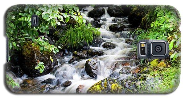 Small Alaskan Waterfall Galaxy S5 Case