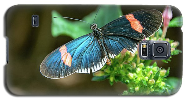 Small Black Postman Butterfly Galaxy S5 Case
