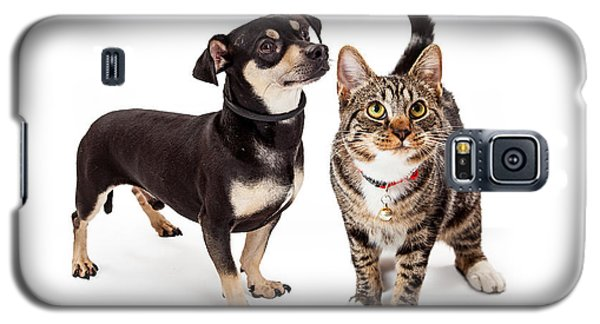 Small Dog And Cat Looking Up Together Galaxy S5 Case