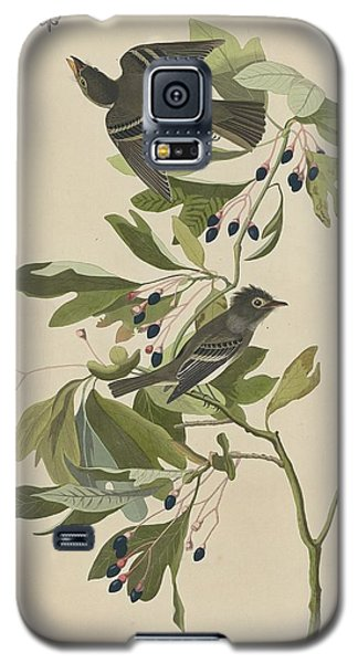 Small Green-crested Flycatcher Galaxy S5 Case