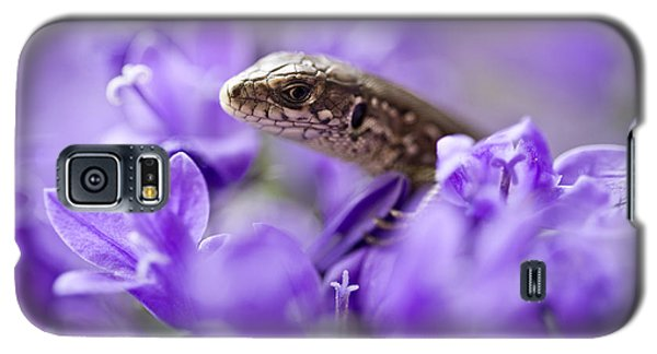 Small Lizard Galaxy S5 Case by Jaroslaw Blaminsky