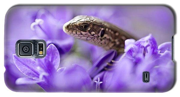 Small Lizard Galaxy S5 Case