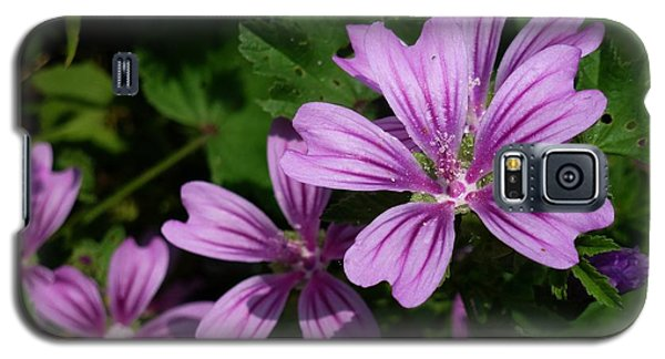 Small Mauve Flowers 6 Galaxy S5 Case