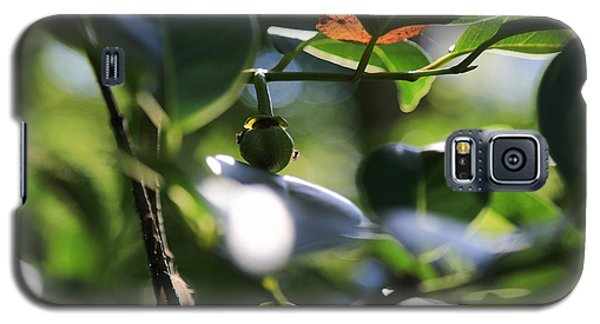 Small Nature's Beauty Galaxy S5 Case