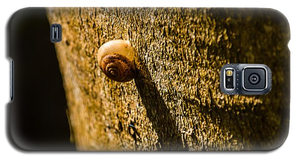 Small Snail On The Tree Galaxy S5 Case