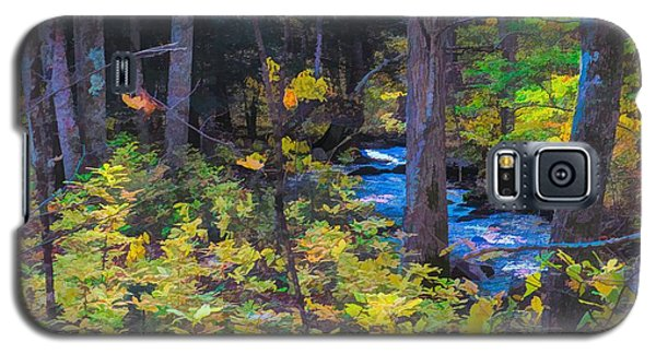 Small Stream Through Autumn Woods Galaxy S5 Case