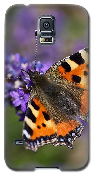 Small Tortoiseshell Galaxy S5 Case