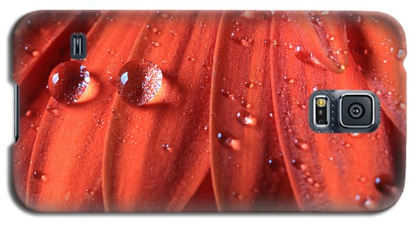 Small Water Drops Galaxy S5 Case