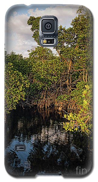 Galaxy S5 Case featuring the photograph Small Waterway In Vitolo Preserve, Hutchinson Isl  -29151 by John Bald