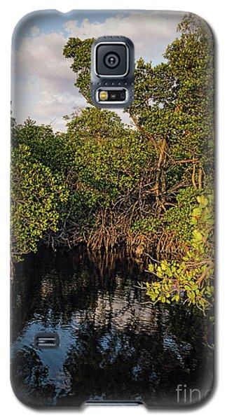Small Waterway In Vitolo Preserve, Hutchinson Isl  -29151 Galaxy S5 Case