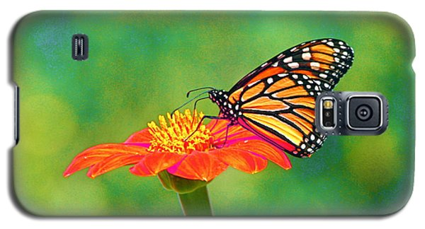 Galaxy S5 Case featuring the photograph Small Wonders by Byron Varvarigos