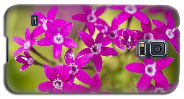Smell Purple Galaxy S5 Case