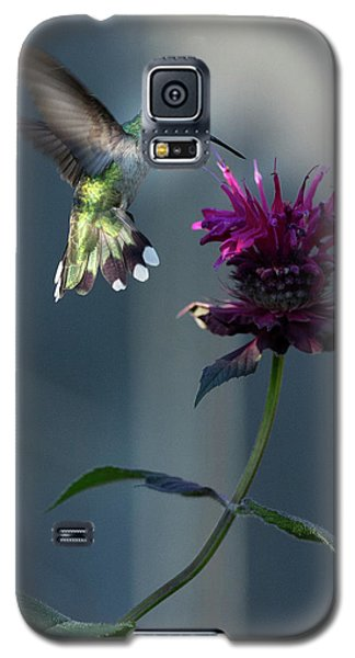 Galaxy S5 Case featuring the photograph Smiles In The Garden by Everet Regal