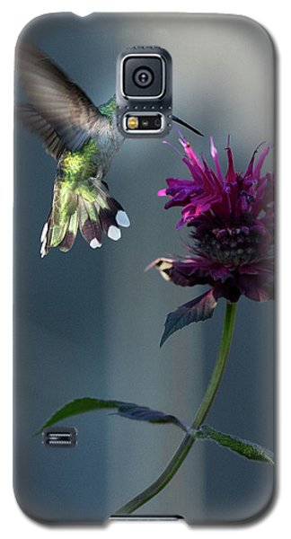 Smiles In The Garden Galaxy S5 Case by Everet Regal