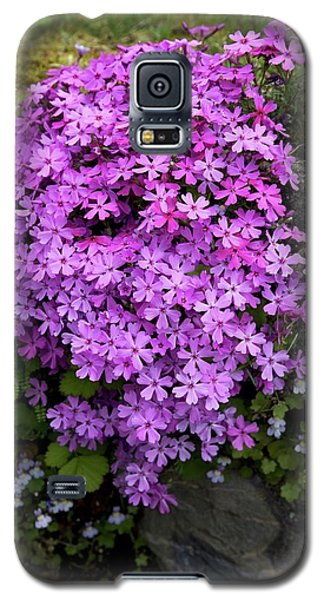 Galaxy S5 Case featuring the photograph Living Bouquet by Colleen Williams