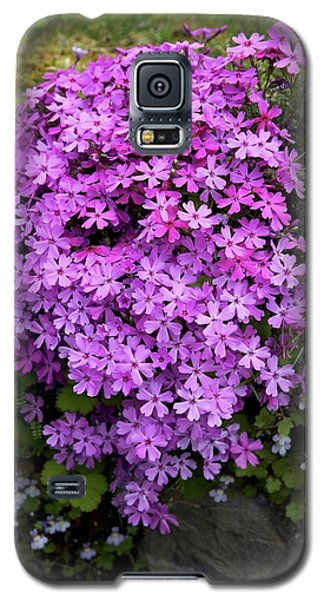Living Bouquet Galaxy S5 Case by Colleen Williams