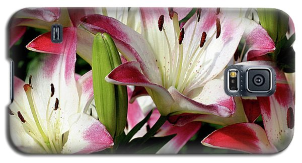 Smiling Lilies Galaxy S5 Case