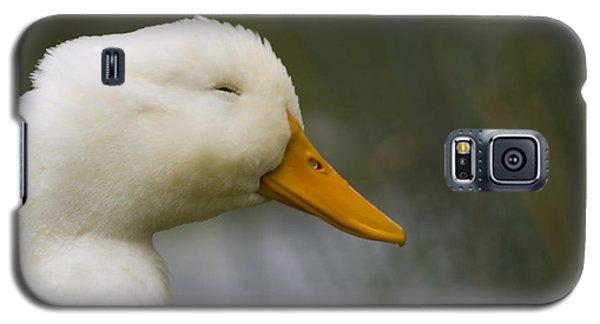 Galaxy S5 Case featuring the photograph Smiling Pekin Duck by Tara Lynn