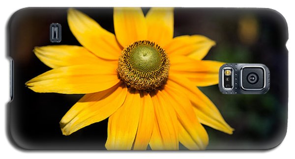 Smiling Sun Galaxy S5 Case