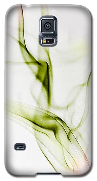 Dragon Galaxy S5 Case - Smoke Wings by Nailia Schwarz